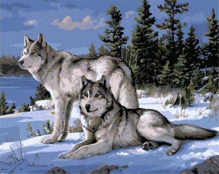 1-panel-wolf-animals-diy-painting-by-numbers