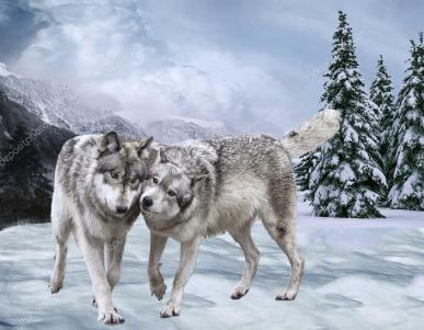 depositphotos_108670718-stock-photo-couple-of-happy-wolfs-against