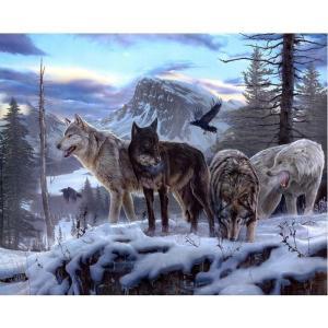 pacote-de-lobo-100-broca-completa-diy-pintura