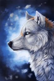 void_by_wolf_minori-d4l202x