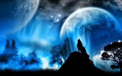 winter-wolf_050518374