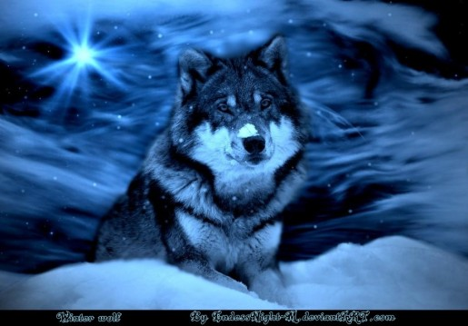 winter_wolf_by_endlessnight_m
