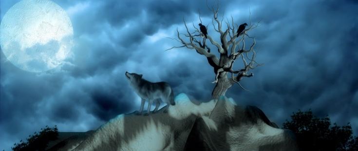 wolf_birds_alone_126218_2560x1080