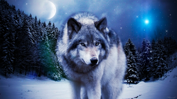 Wolves-dudespie-37395298-3415-1920